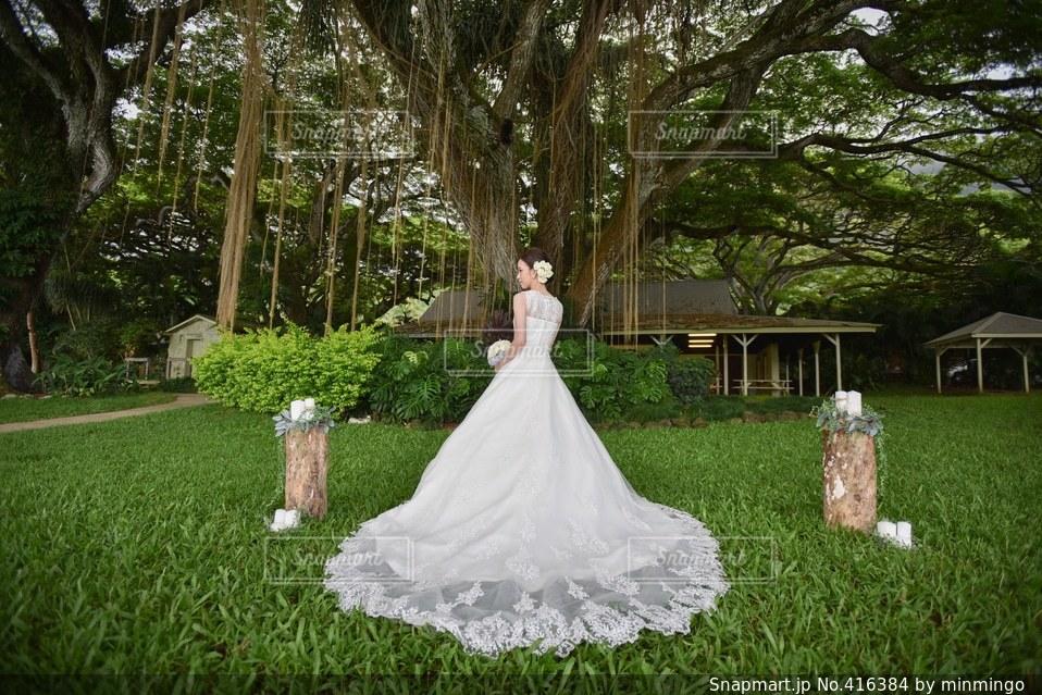 結婚式の写真・画像素材[416384]