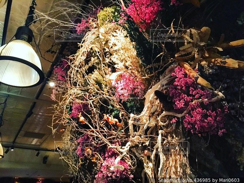 flowerの写真・画像素材[436985]