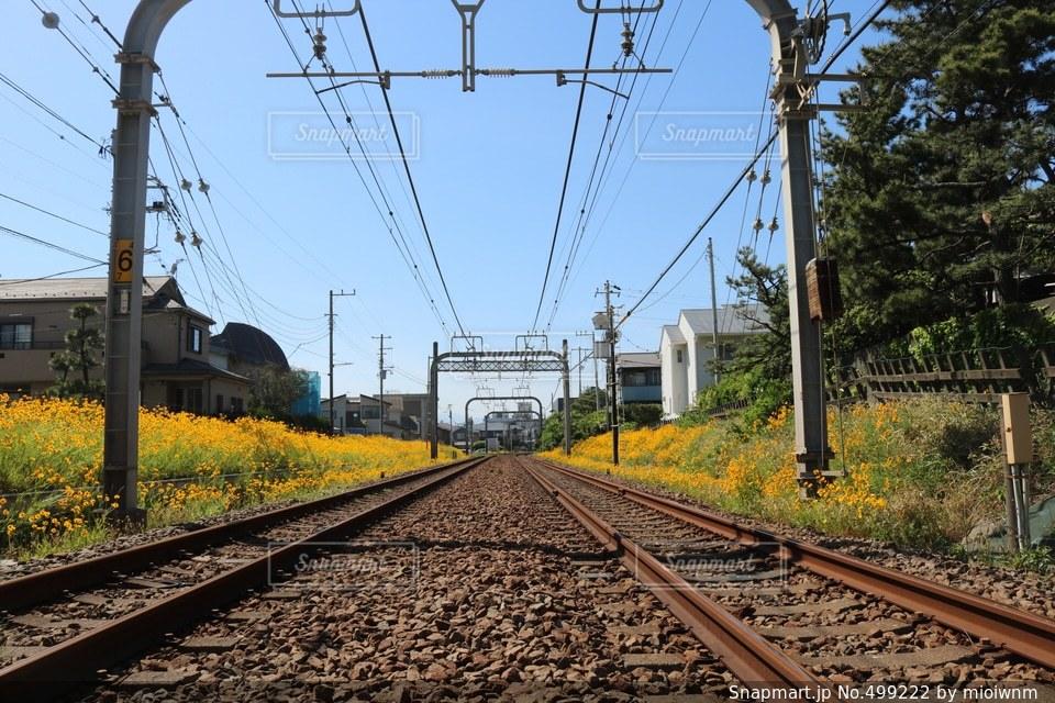 電車の写真・画像素材[499222]