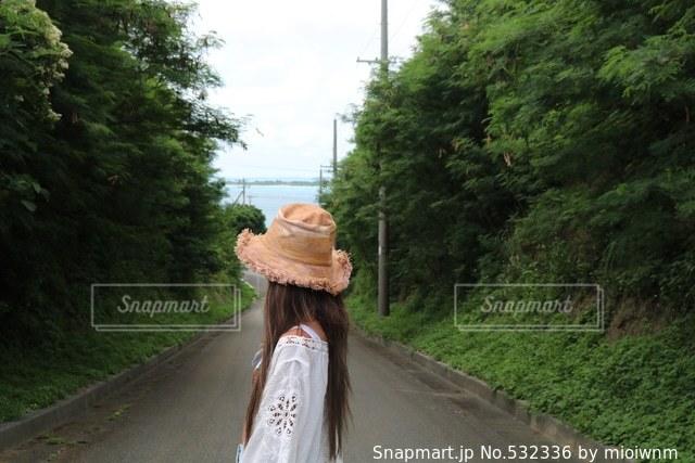 沖縄の写真・画像素材[532336]