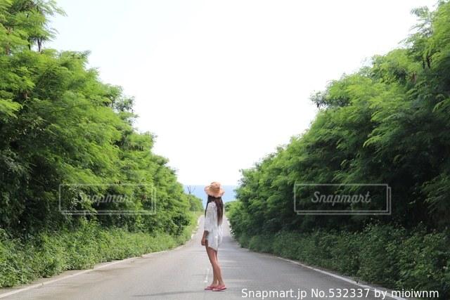 沖縄の写真・画像素材[532337]