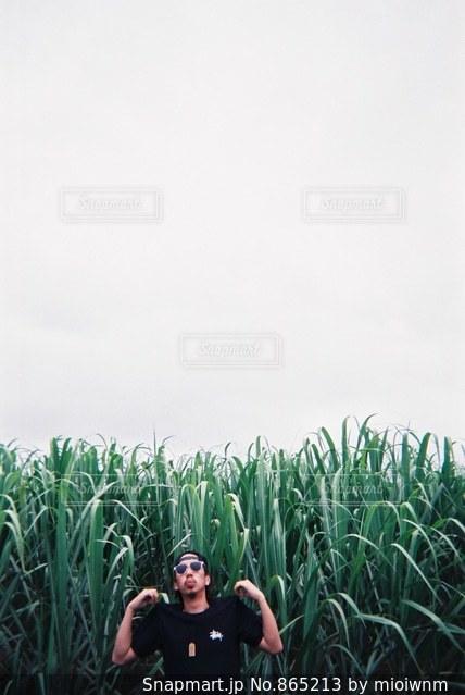 草の中に立っている男の人の写真・画像素材[865213]