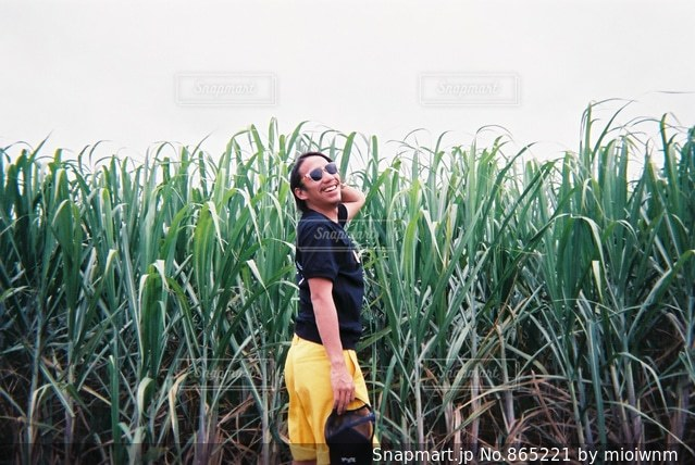 草の中に立っている男の人の写真・画像素材[865221]