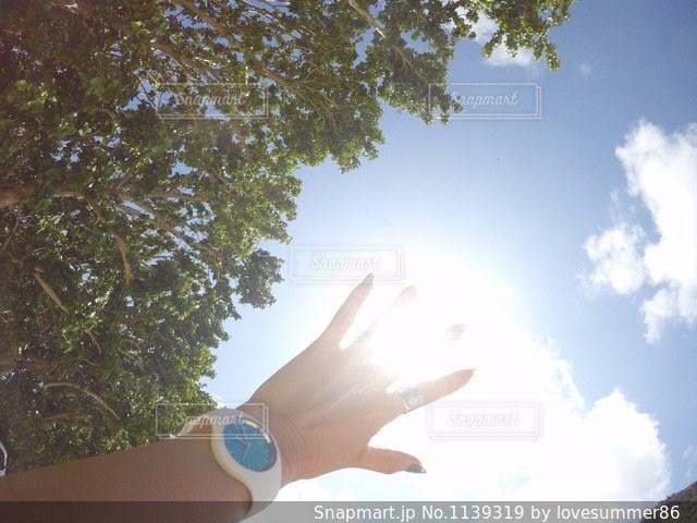 木の隣に立っている人の写真・画像素材[1139319]