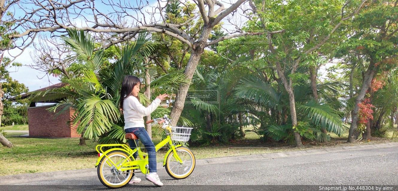 No.448304 自転車