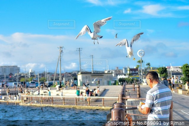 水の体の上に空気を通って飛んで男の写真・画像素材[869091]
