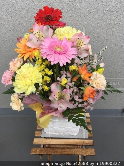 花束の写真・画像素材[542688]