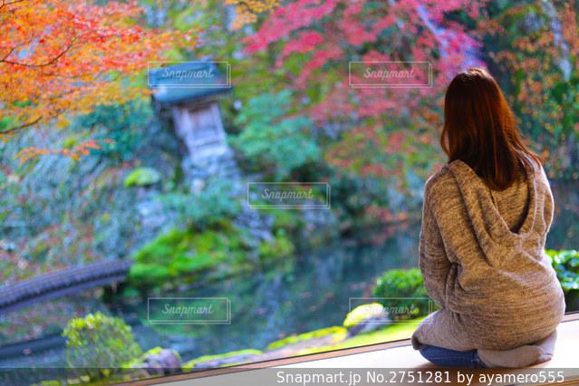 庭園を眺める贅沢な時間の写真・画像素材[2751281]