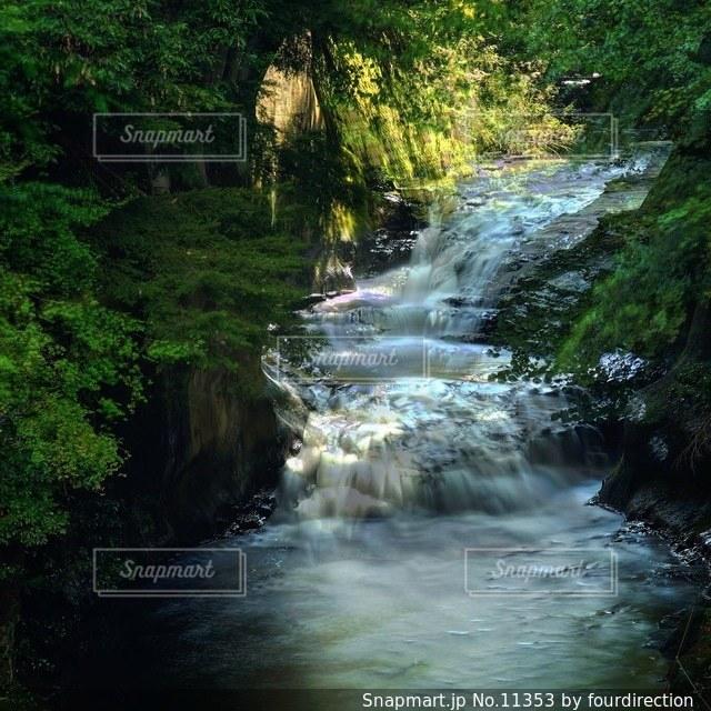 自然の写真・画像素材[11353]