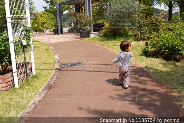 散策の写真・画像素材[1136754]