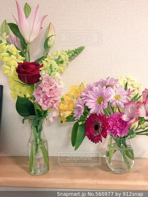 花の写真・画像素材[560977]