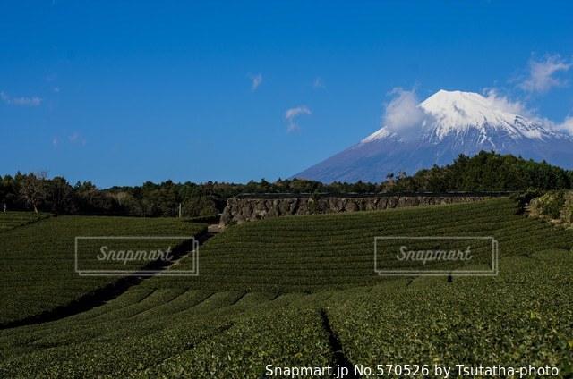 富士山 - No.570526