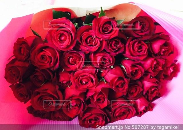 バラ  薔薇  バラの花  ローズ  花束 誕生日  プレゼント  花屋  赤いバラ  真紅のバラ  真っ赤なバラの写真・画像素材[587287]