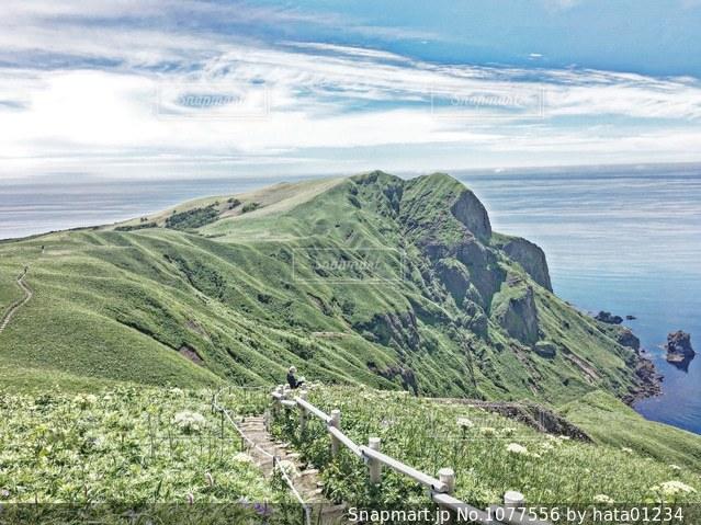 Rebun Island.の写真・画像素材[1077556]
