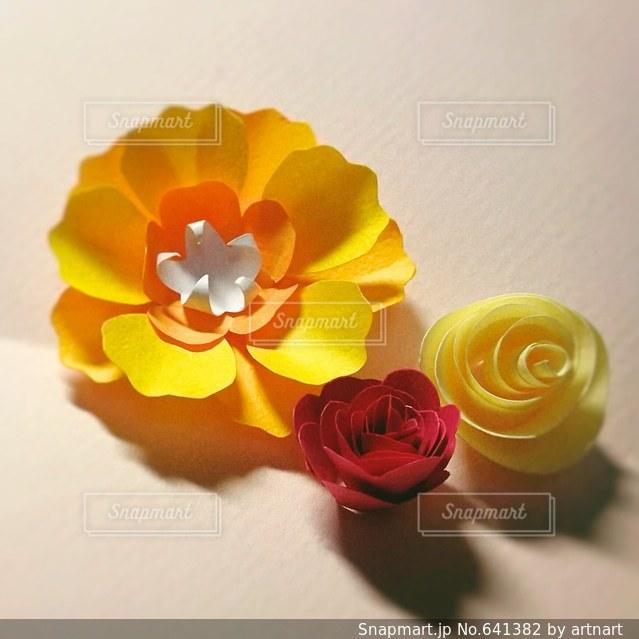 花の写真・画像素材[641382]