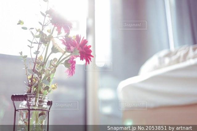 朝の光とガーベラとユーカリの写真・画像素材[2053851]