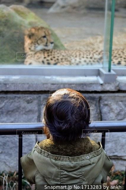 動物園で坐っている人の写真・画像素材[1713283]