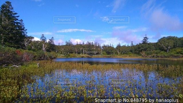 神仙沼の写真・画像素材[848795]