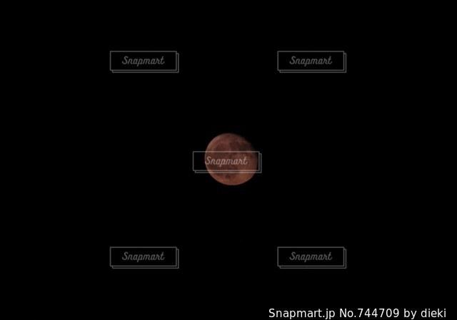 近くに黒い背景のアップの写真・画像素材[744709]