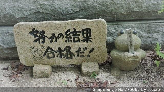 如意輪寺かえる寺の写真・画像素材[775065]