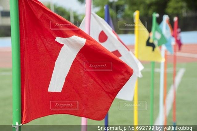運動会の旗の写真・画像素材[692799]