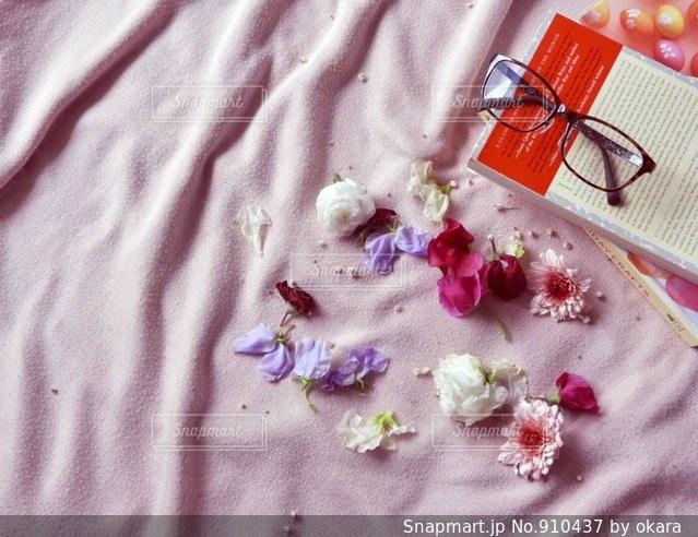 花の写真・画像素材[910437]