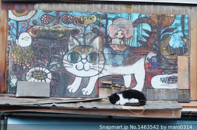 猫の町の写真・画像素材[1463542]