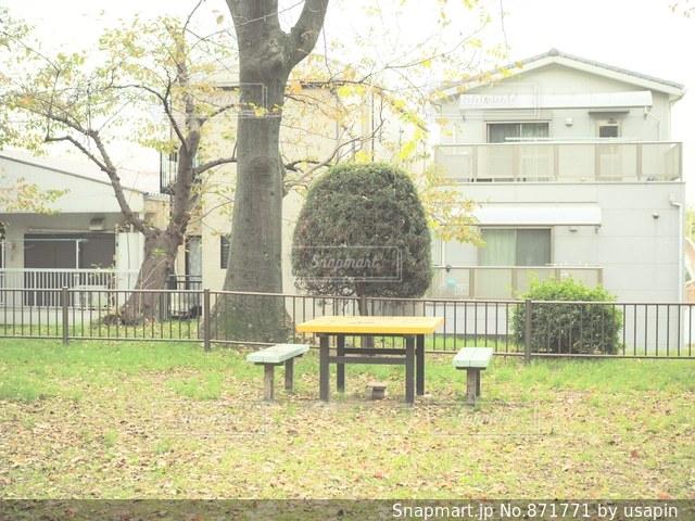 公園のベンチの写真・画像素材[871771]