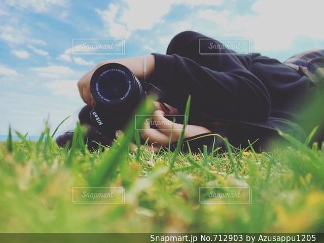 草の中にの写真・画像素材[712903]