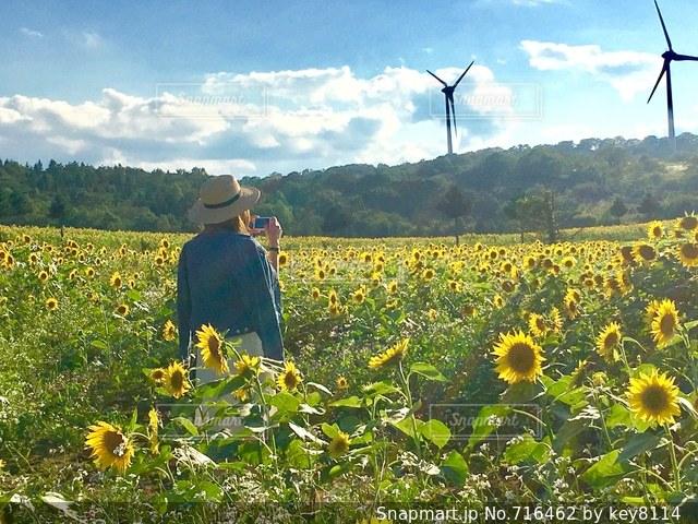 フィールドに黄色の花の男の写真・画像素材[716462]