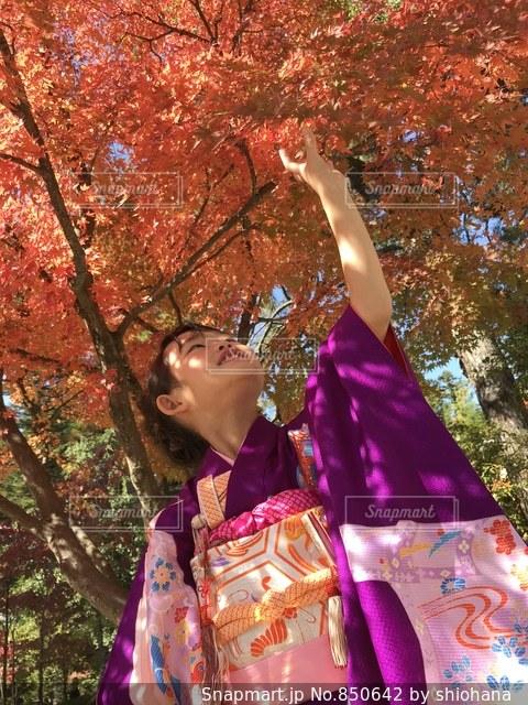 紫色のドレスを着ている人の写真・画像素材[850642]