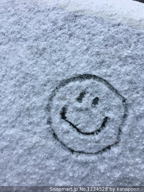 雪ににこちゃんの写真・画像素材[1234528]