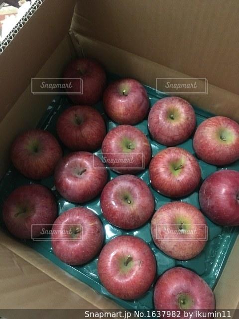 りんごたくさんの写真・画像素材[1637982]