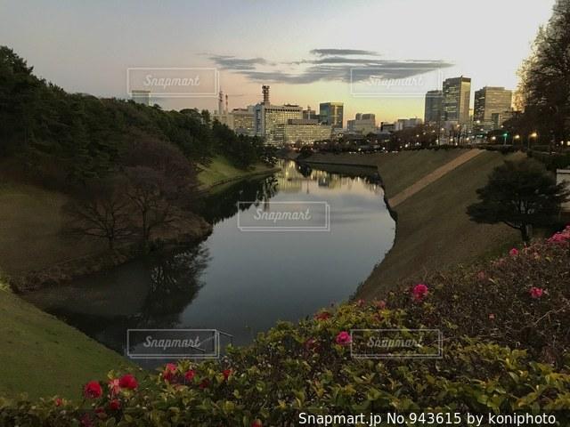 夕焼け空を照らす池の写真・画像素材[943615]