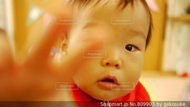 触ろうとする子どもの写真・画像素材[809903]