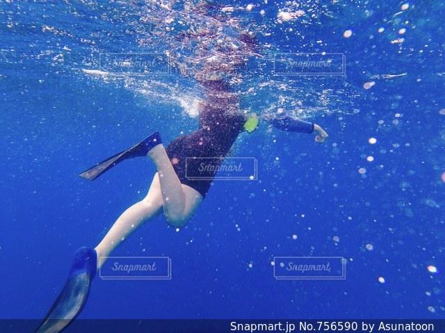 ハワイの海で泳ぐ。の写真・画像素材[756590]