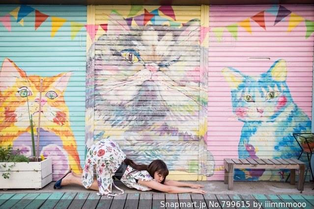 猫のポーズ🐈🐈の写真・画像素材[799615]