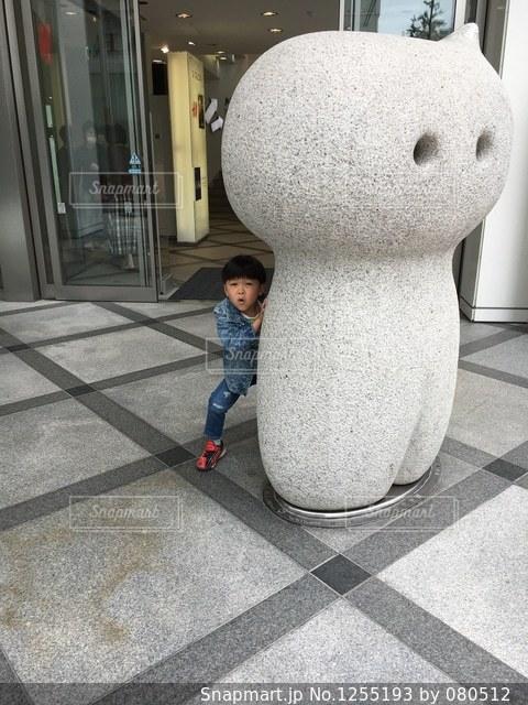 ひっこり?はん!!の写真・画像素材[1255193]