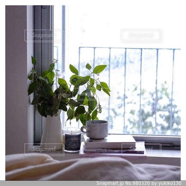 日当たりの良い窓に花の花瓶が飾ってある写真 - No.980320