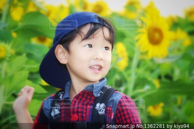 向日葵と僕の写真・画像素材[1362281]