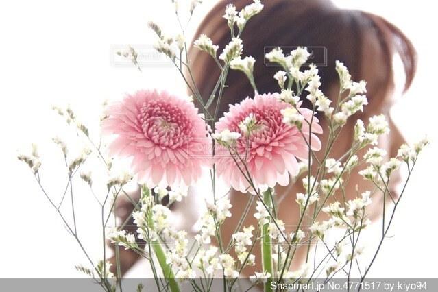 植物の上のピンクの花の写真・画像素材[4771517]