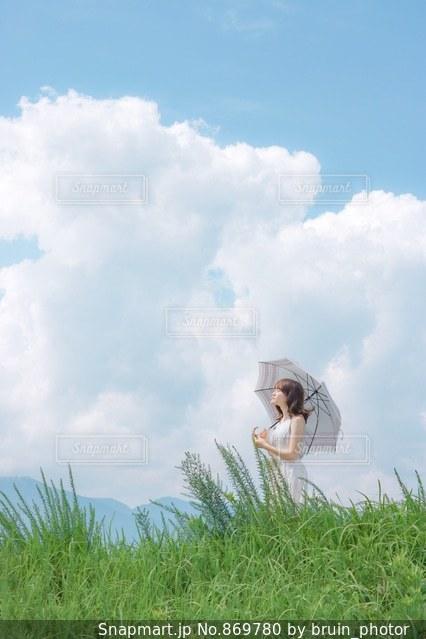 夏の風の写真・画像素材[869780]