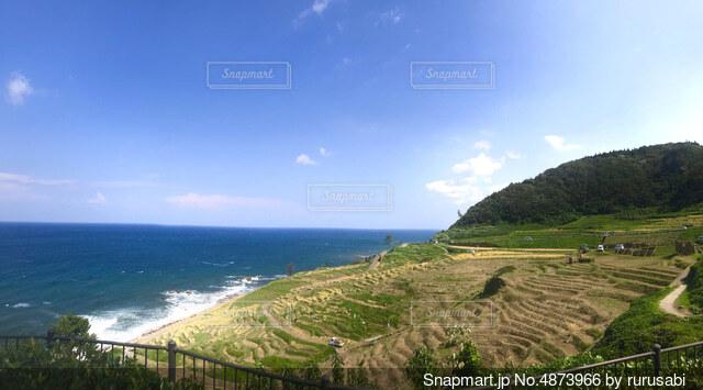 棚田と海の写真・画像素材[4873966]
