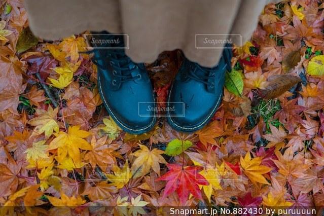 紅葉の絨毯に足を踏み入れたの写真・画像素材[882430]