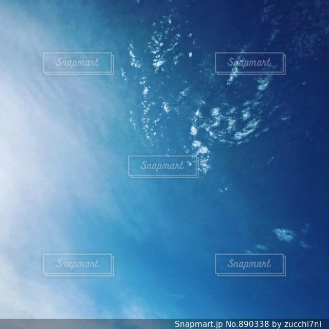 宇宙空を飛んでいる鳥の写真・画像素材[890338]