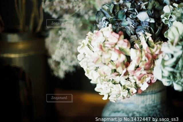 紫陽花の写真・画像素材[1432447]