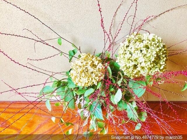 花のクローズアップの写真・画像素材[4874779]