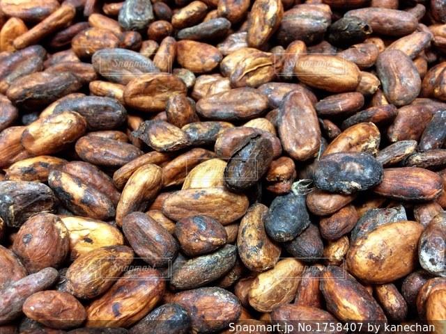 カカオ豆の写真・画像素材[1758407]