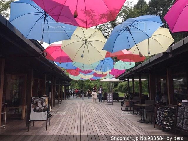 開いている傘の写真・画像素材[933684]