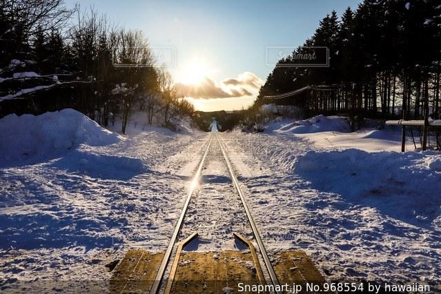 雪に覆われたフィールドの写真・画像素材[968554]